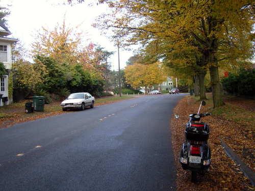 Queen Anne Hill fall colours