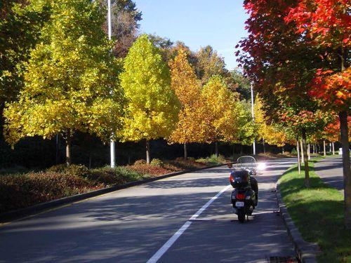 Harbor Avenue in West Seattle