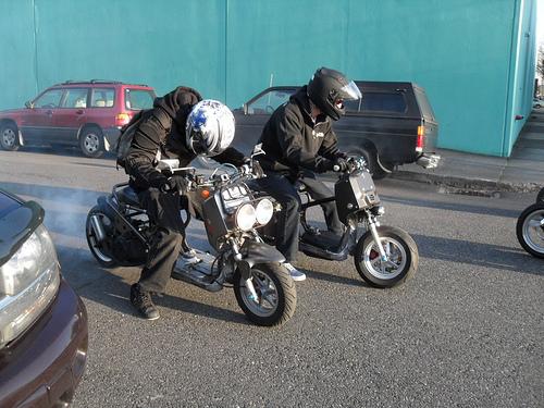 Honda Ruckus riders