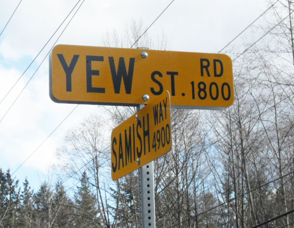 Yew Street Road sign