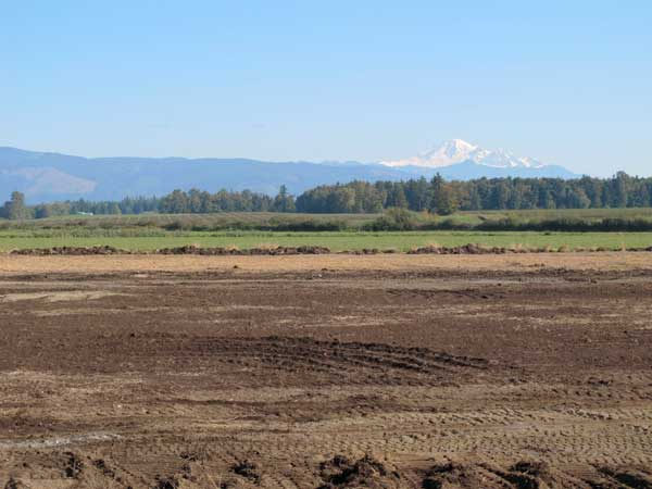 Mount Baker, distant