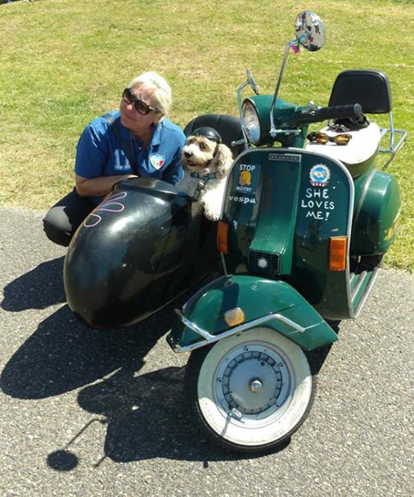 Oscar the Sidecar Dog